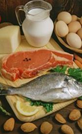 É importante seguir uma dieta com uma quantidade adequada de proteína