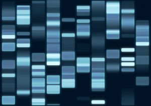 Parasitas no genoma humano